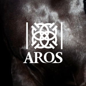 Aros - Pantumaka Agencia de Publicidad en Murcia