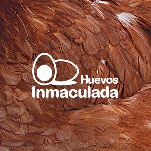 Huevos-Inmaculada-Pantumaka-Agencia-de-Publicidad-Murcia