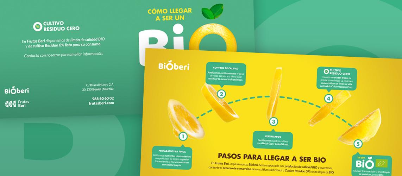 frutas-beri-diptico-Pantumaka-Agencia-de-Publicidad-Murcia