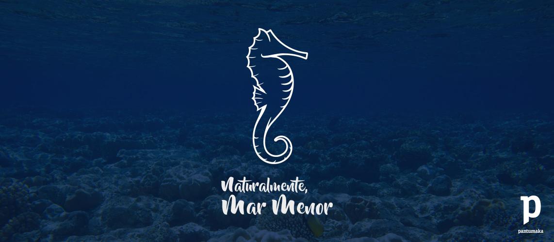 Mar-Menor-logotipo-caballito-Pantumaka-Agencia-de-Publicidad-Murcia